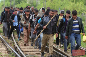 migranti, nedozvoljen prelazak državne granice